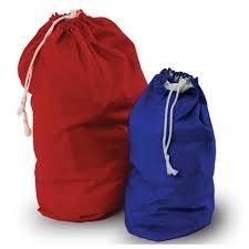 Bummis Tote Bag/Pail Liner